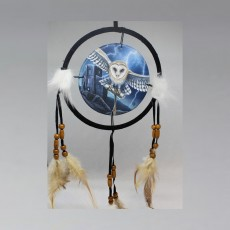 Blue Owl Dreamcatcher